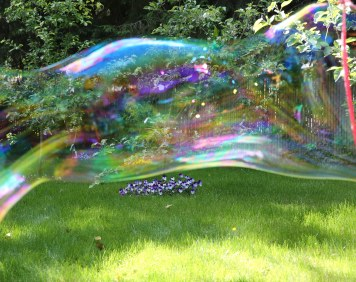 Kesher Garden Party - Rainbow bubble