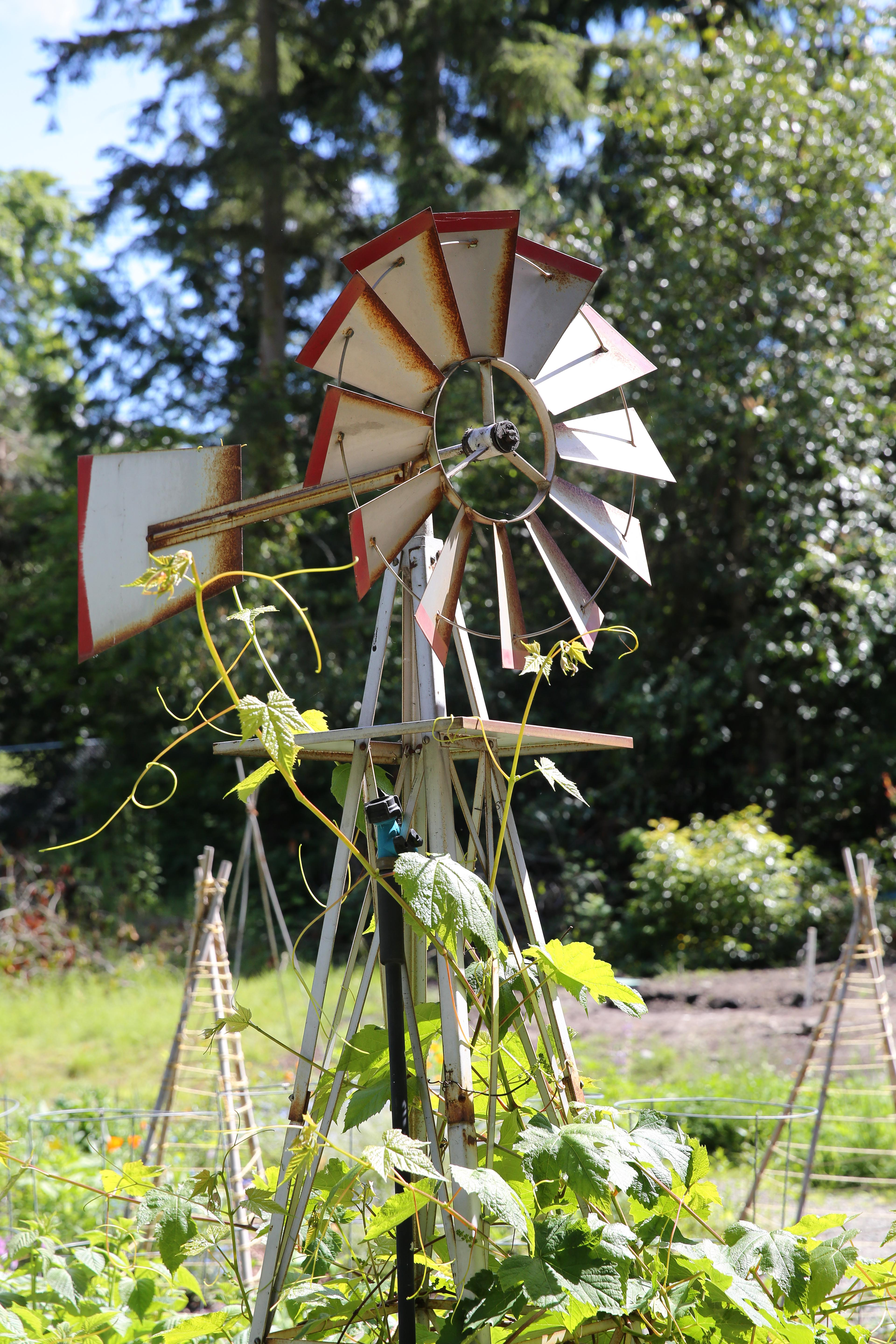 Kesher Garden Party - Windmill